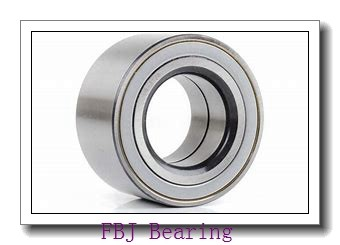 35 mm x 72 mm x 23 mm  FBJ NUP2207 cylindrical roller bearings