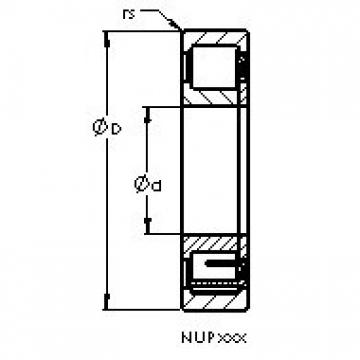 AST NUP2328 M cylindrical roller bearings