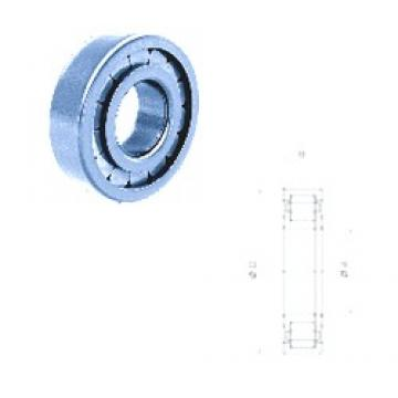 45 mm x 100 mm x 25 mm  Fersa NUP309FM cylindrical roller bearings
