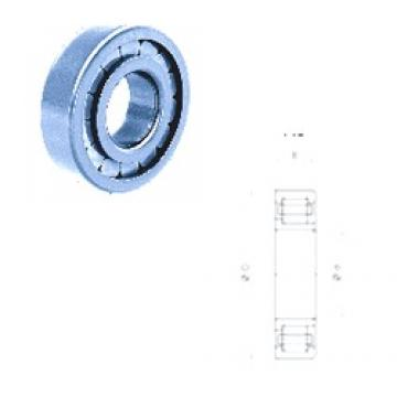 30 mm x 72 mm x 19 mm  Fersa NJ306FM cylindrical roller bearings