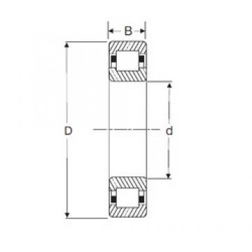 120 mm x 215 mm x 40 mm  SIGMA NUP 224 cylindrical roller bearings