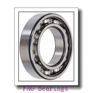 160 mm x 290 mm x 80 mm  FAG NUP2232-E-M1 cylindrical roller bearings
